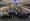 "IUC试点项目:""德国曼海姆港—重庆果园港""班列正式运行"